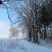 zima_42