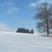 zima_46