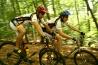 cykl.jpg